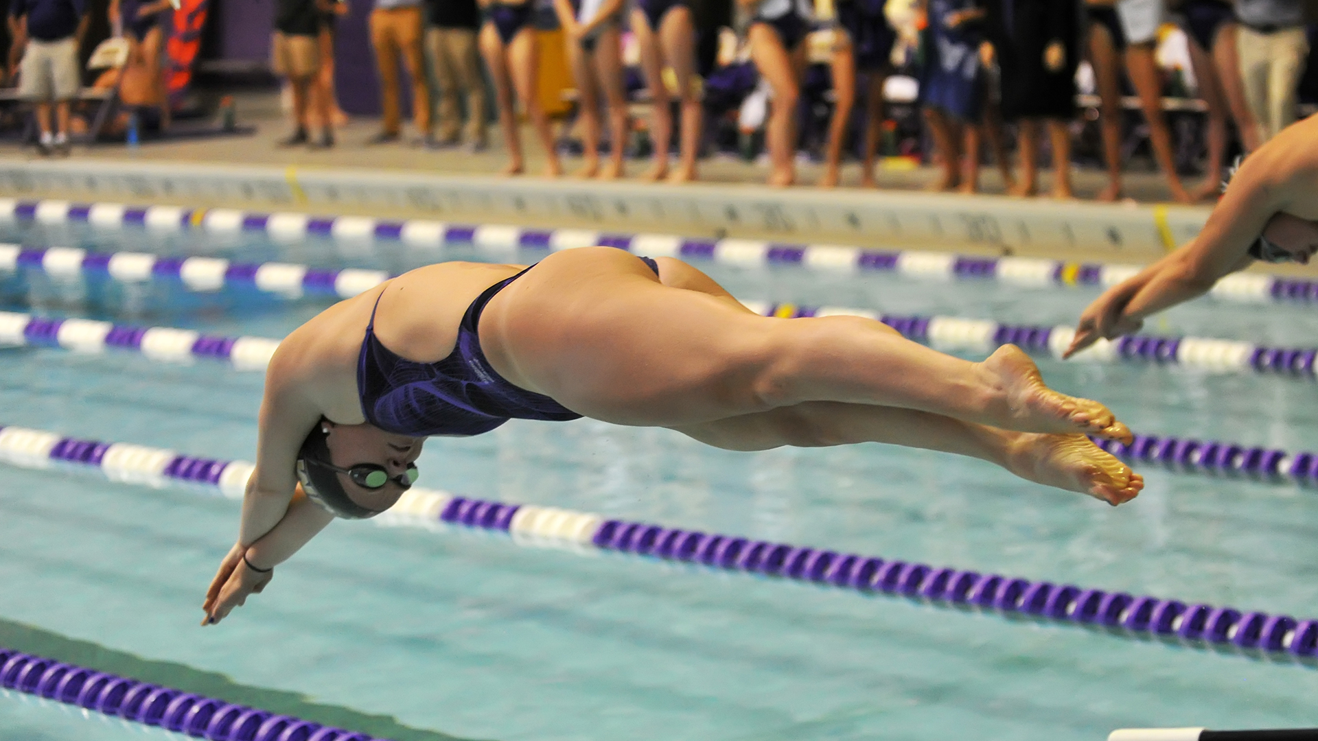 Women's Swimming and Diving: Dukes Finish Frank Elm Invitational in Fifth )