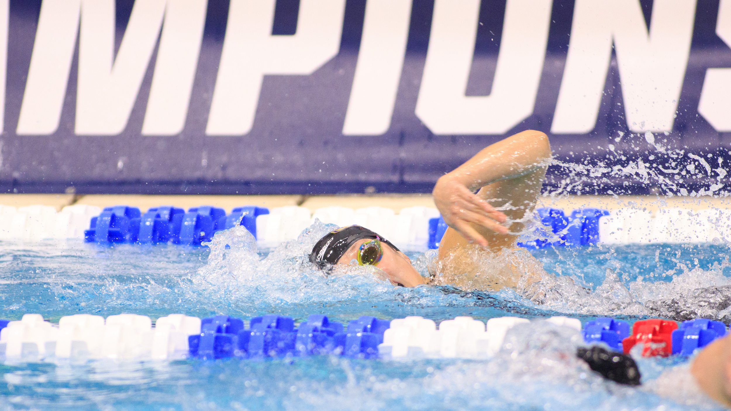 Swimming & Diving: Zhang Finishes 29th in 200 Freestyle at NCAA's
