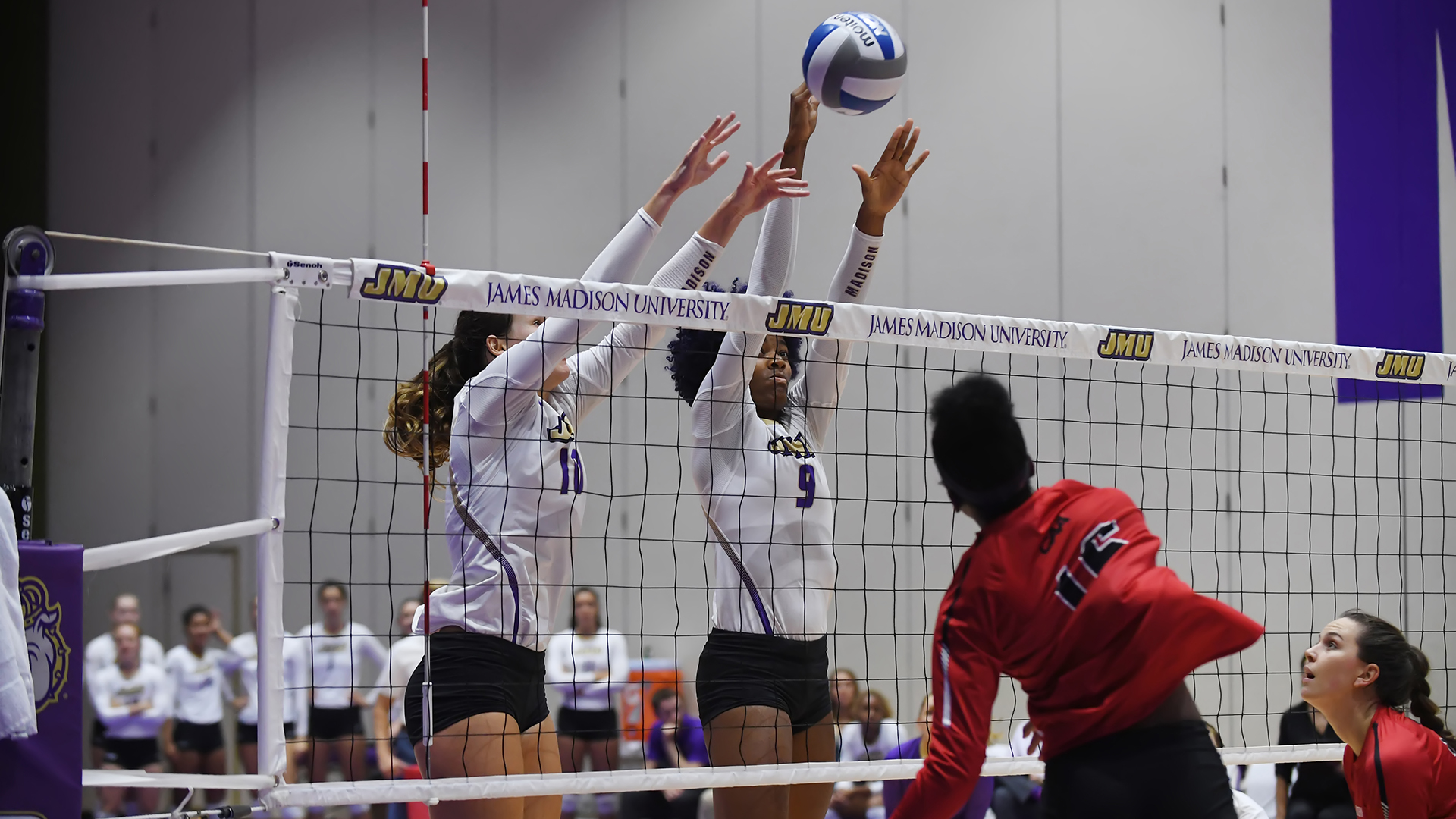 Women's Volleyball: Volleyball Overpowers Northeastern for Second Straight Sweep