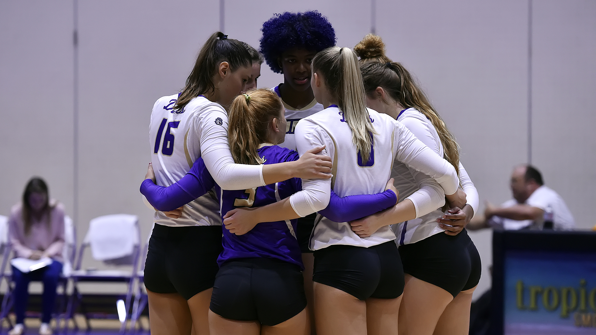 Women's Volleyball: Dukes Suffer First CAA Loss to Hofstra