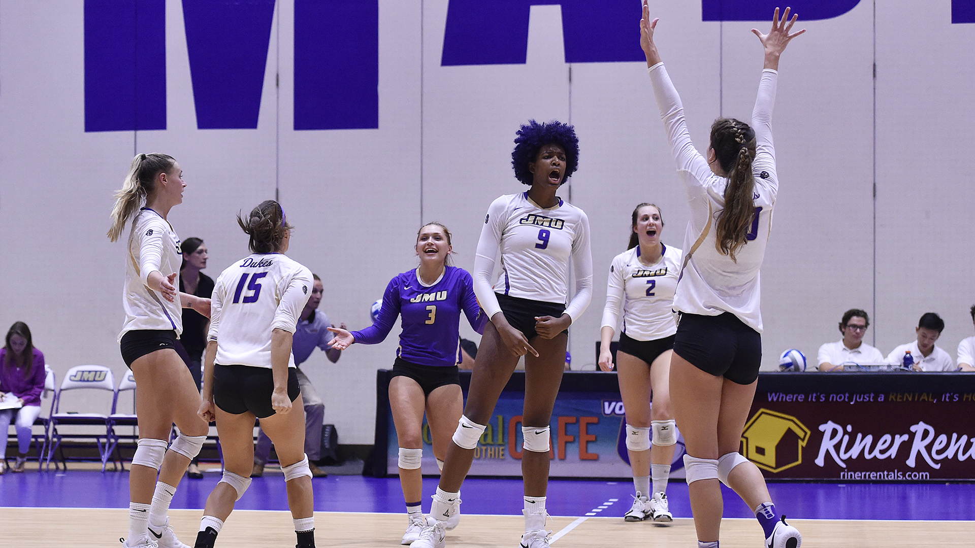 Volleyball: Volleyball Routs Charleston, Advances to CAA Final