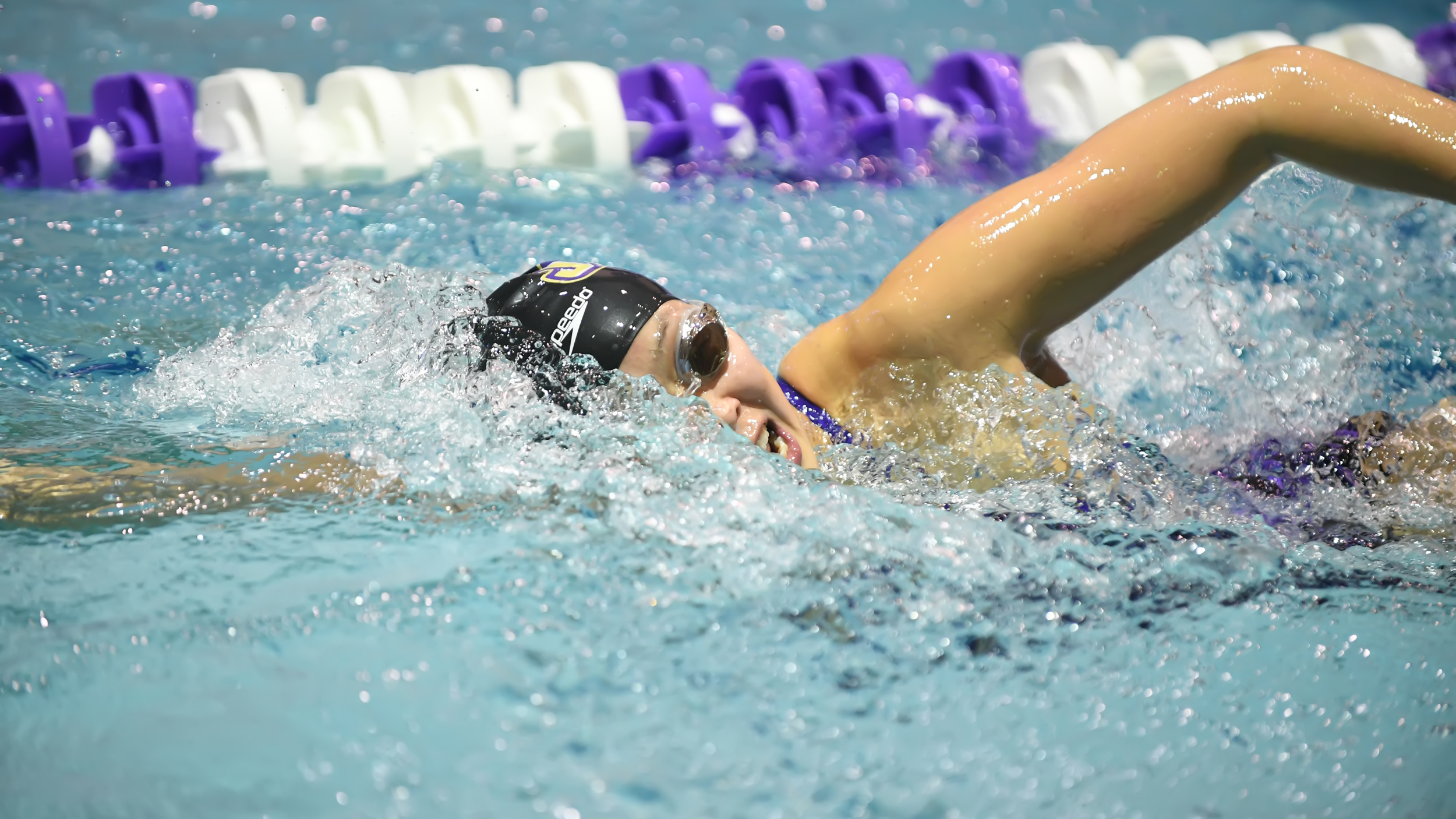 Swimming & Diving: Dukes Compete in Quad Meet